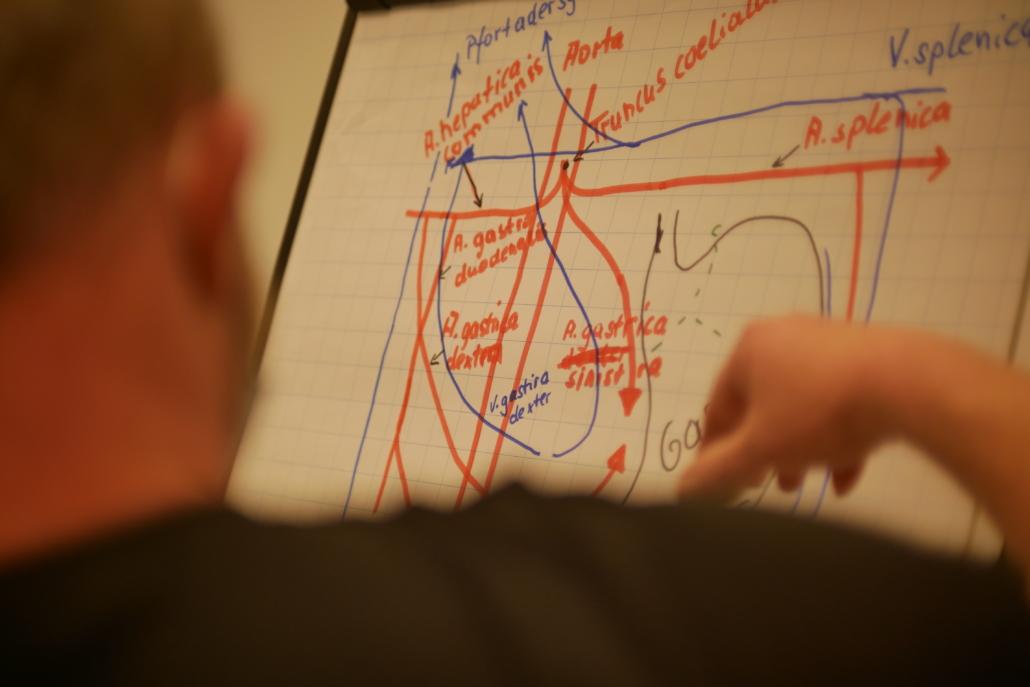 Zeichnung Einblick ins Klassenzimmer an der STILL ACADEMY
