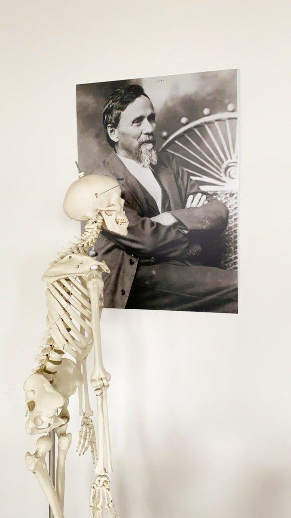 Skelett schaut zu A.T. STILL für die Anmeldung an der STILL ACADEMY