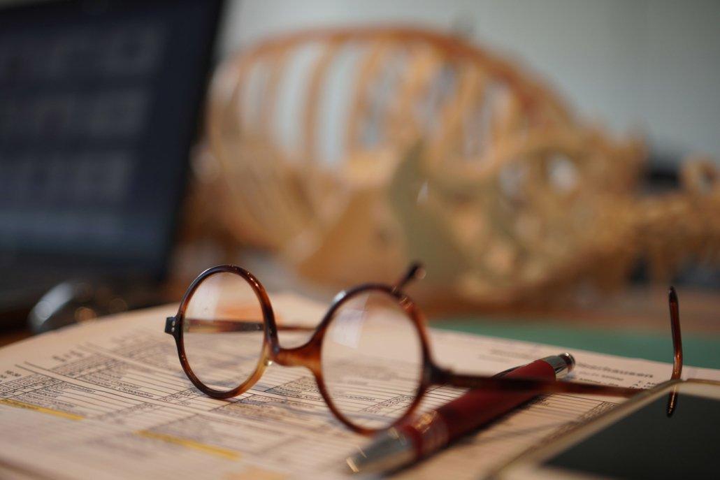 gedanken zum Berufsbild der Osteopathie